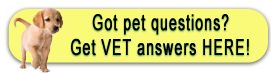 Catskill Veterinary Services, PLLC offers the VIN Client Information Library
