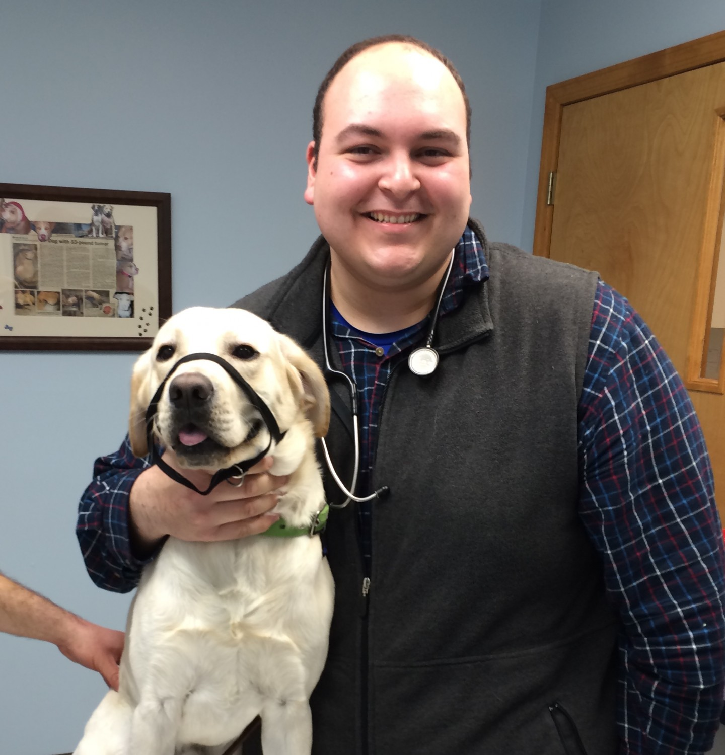 Dr. Joe D'Abbraccio, Veterinarian - Catskill Veterinary Services, PLLC