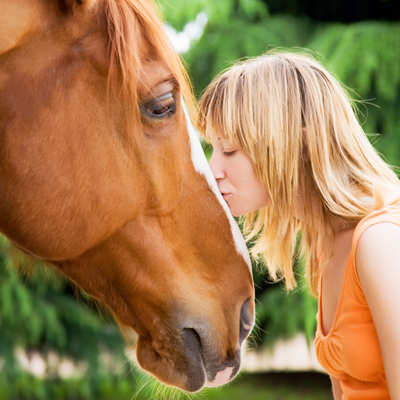 Catskill Veterinary Services offers house call equine services to the communities of Pine Bush, Goshen, Warwick, Monticello, Jeffersonville, New Hampton, and beyond
